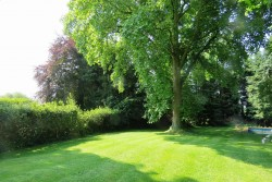 Property Image #27 of 31