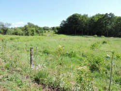 Property Image #16 of 16