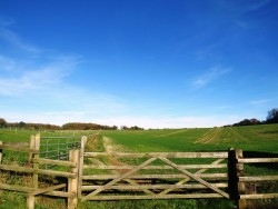 Property Image #18 of 29
