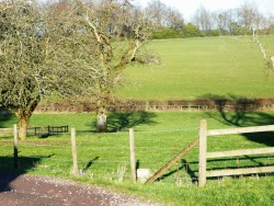 Property Image #12 of 14